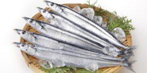5eac013b6be352ad4f9c64a635bfcd47-300x150 サンマ2018年は豊漁で安い!美味しい時期と料理法、サンマ祭も