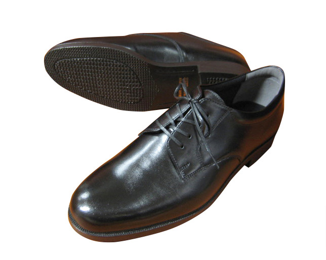 0ee3b0f06058e32fbfb0ee1f092c6da2 - 【河野太郎】刑務所製革靴とは何?商品や注文(購入)方法を調査!